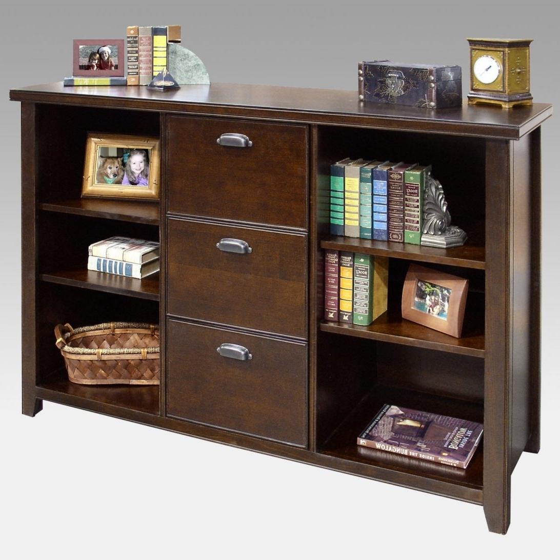 2018 Bookshelves Drawer Combination With Sweet Inspiration File Cabinet Bookshelf The Best Of Bookcase (View 1 of 15)