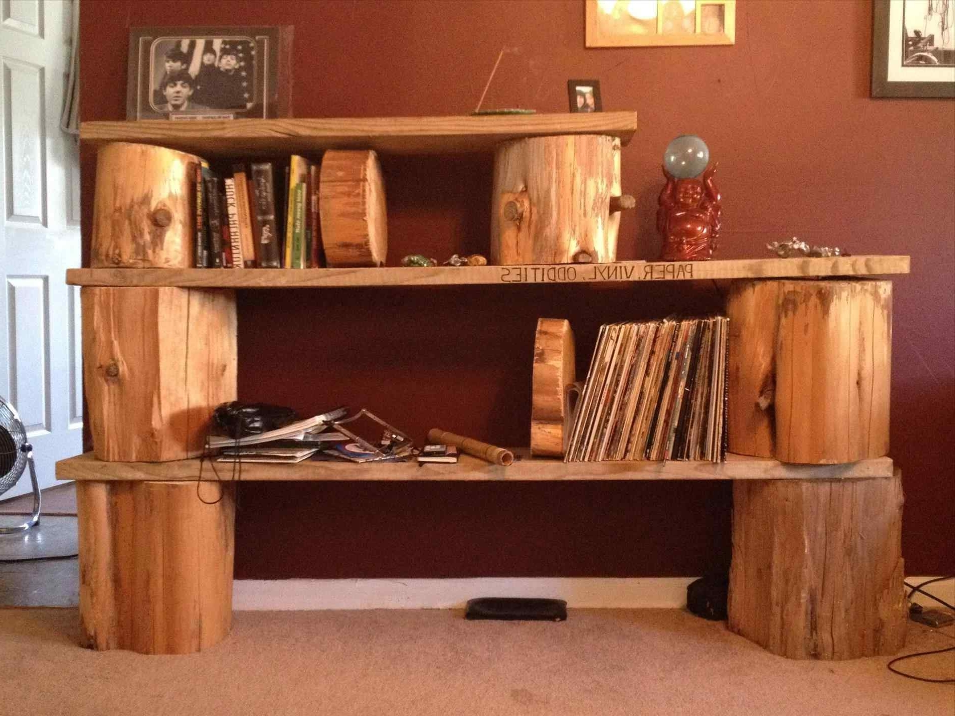 Best And Newest Homemade Wooden Bookshelves (View 2 of 15)