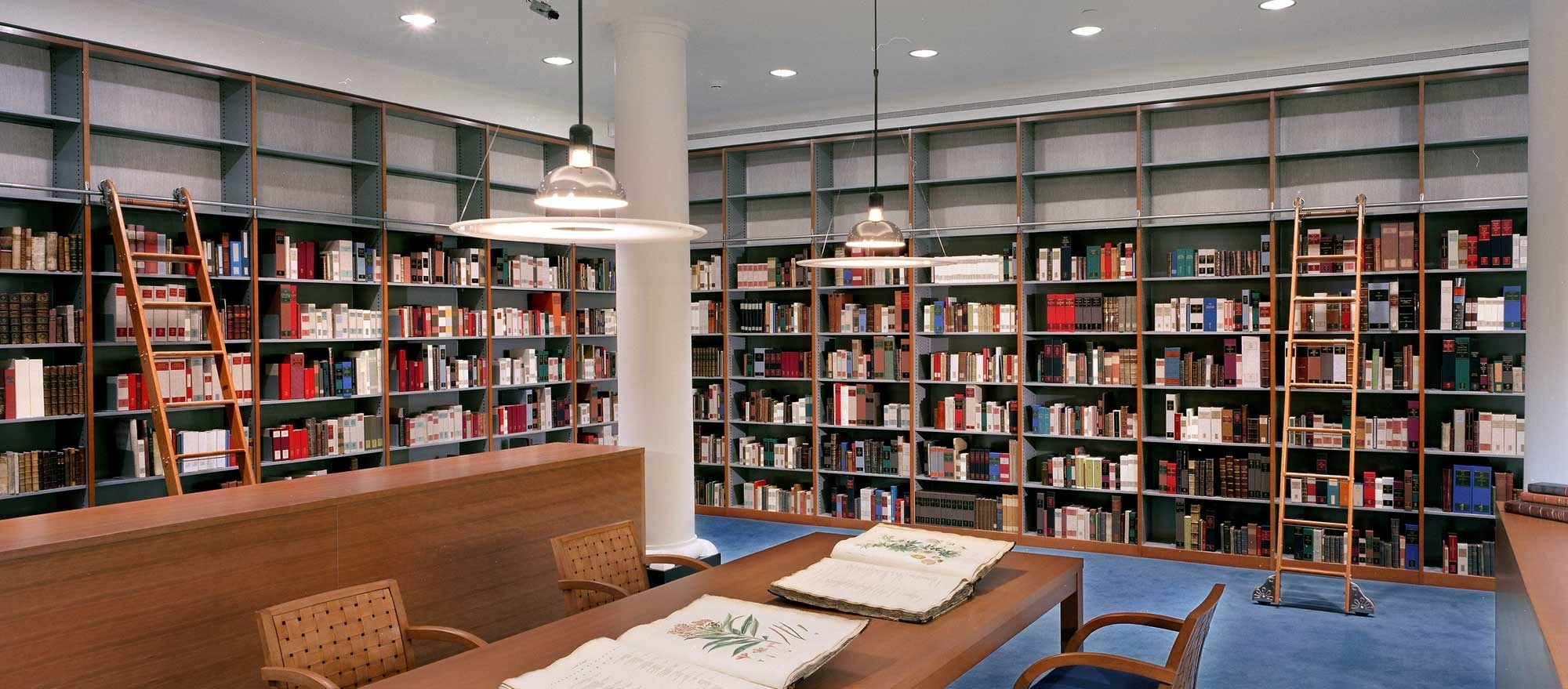 Bookcases Throughout Library Shelfs (View 3 of 15)