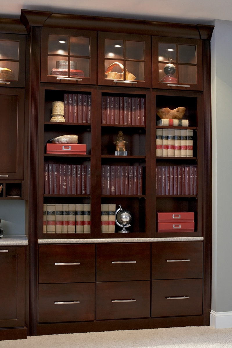 Bookcases With Bottom Cabinets Throughout 2018 Decorative File Fireking Cabinet Gallery
