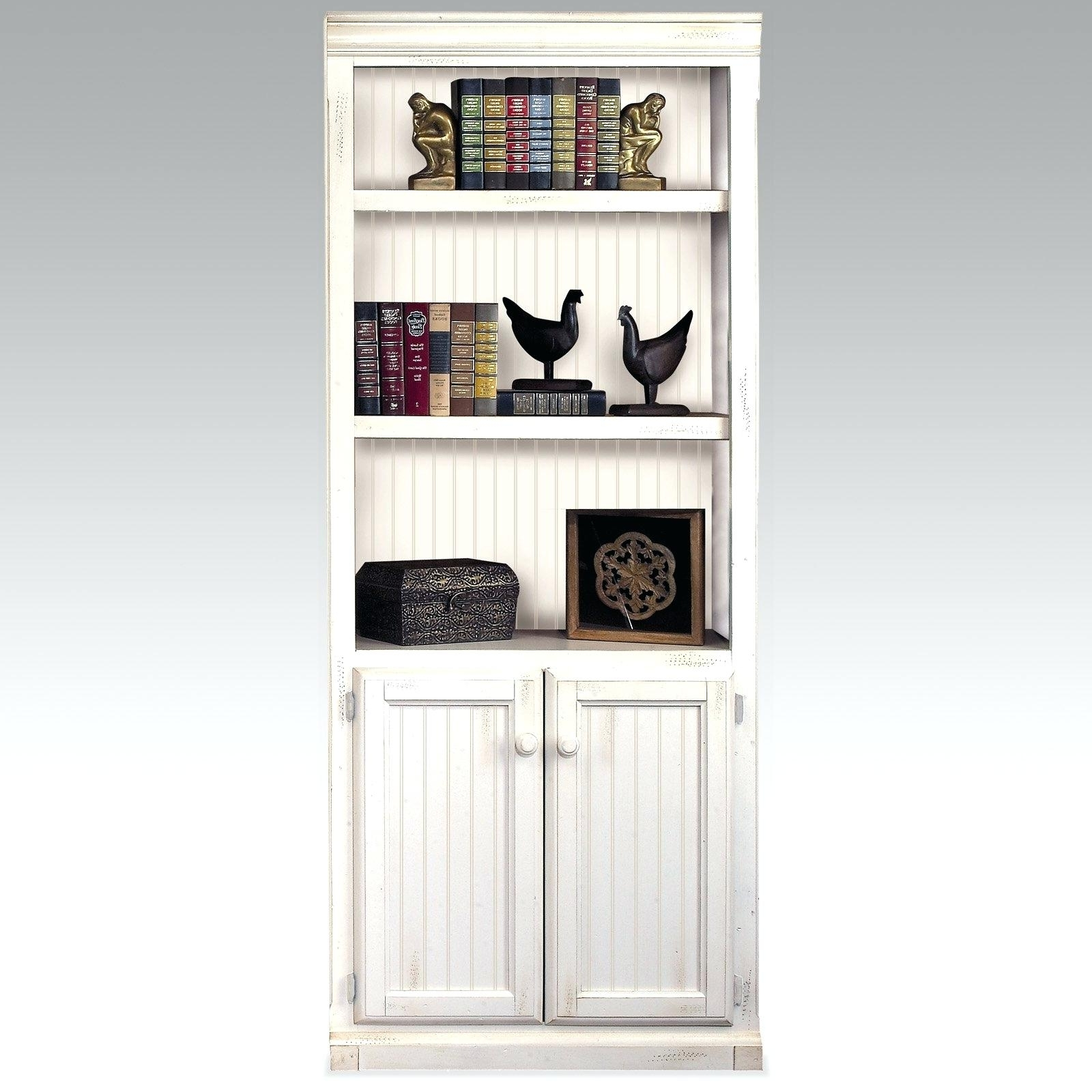 Bookcases With Doors – Zivile Pertaining To Newest Lockable Bookcases (View 6 of 15)