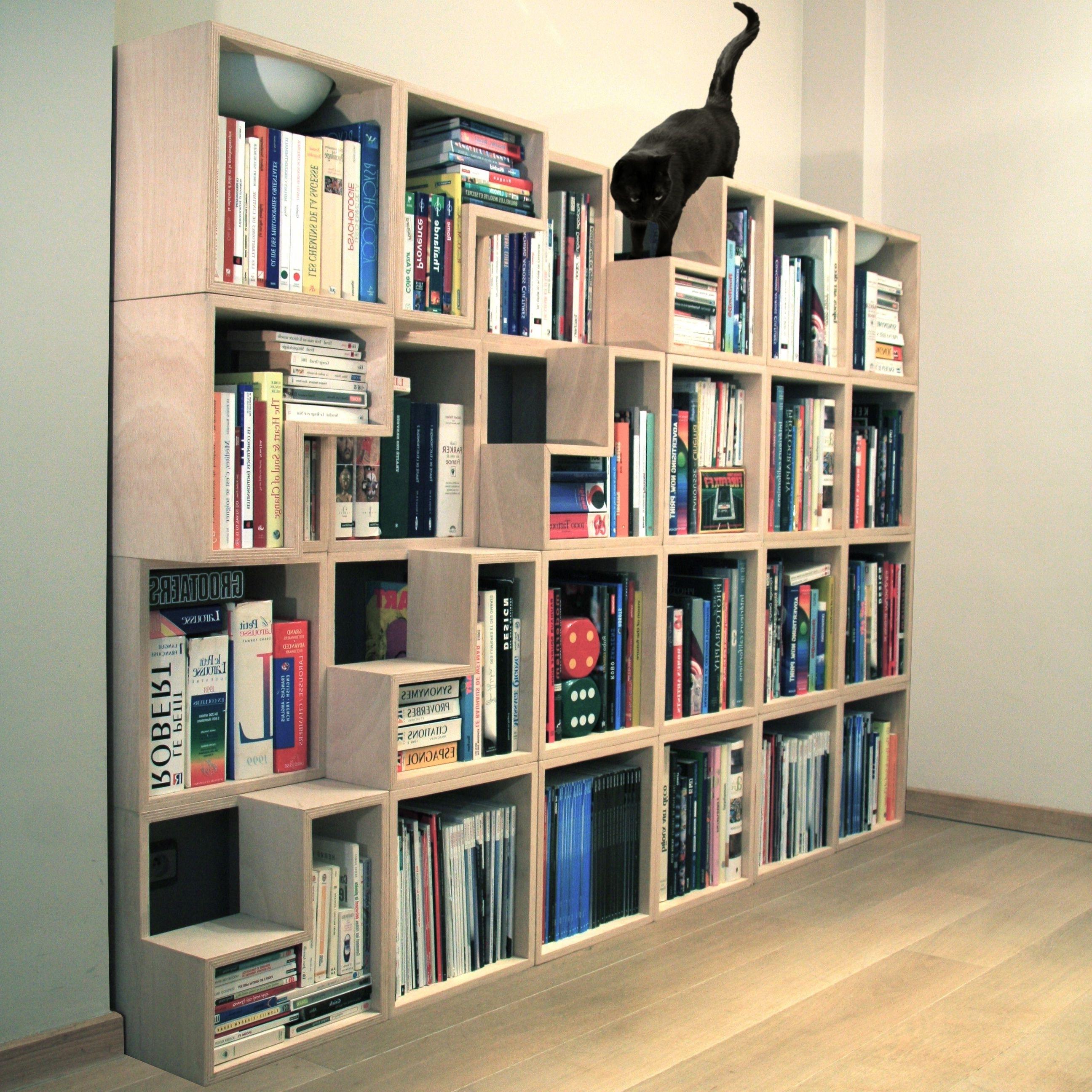Bookshelf: Cool Bookcases 2017 Design Ideas Cool Bookshelves Ikea Regarding  2018 Unique Bookcases Designs (