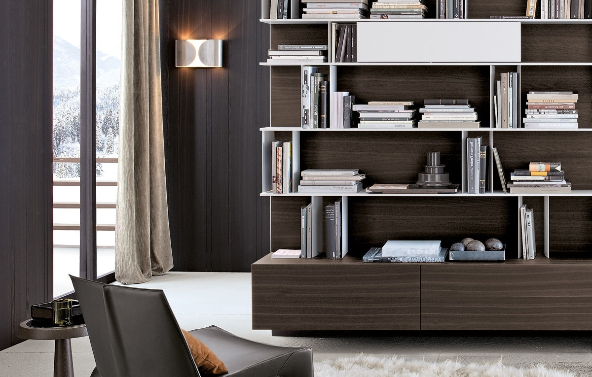 Contemporary Bookcases With Regard To Favorite 10 Contemporary Bookcase Decorating Ideasemma Sand (View 12 of 15)