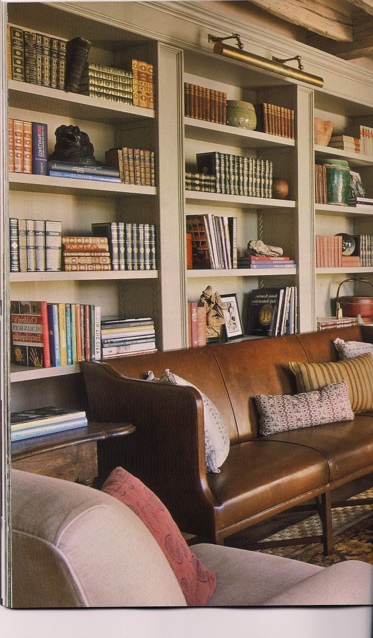 Current Awesome Library Bookcase Lighting Home Design Ideas Classy Simple With Library Bookcases Lighting (View 13 of 15)