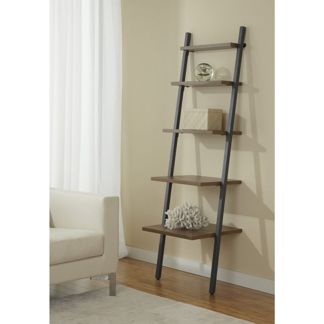 Featured Photo of Ladder Ikea Bookcases