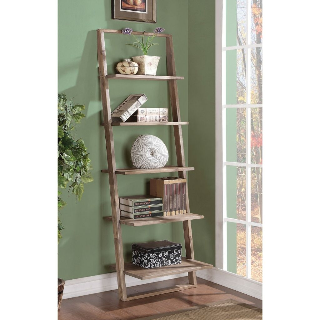 Famous Leaning Ladder Bookcases Regarding Rustic Leaning Ladder Bookcase : Doherty House – Leaning Ladder (View 5 of 15)