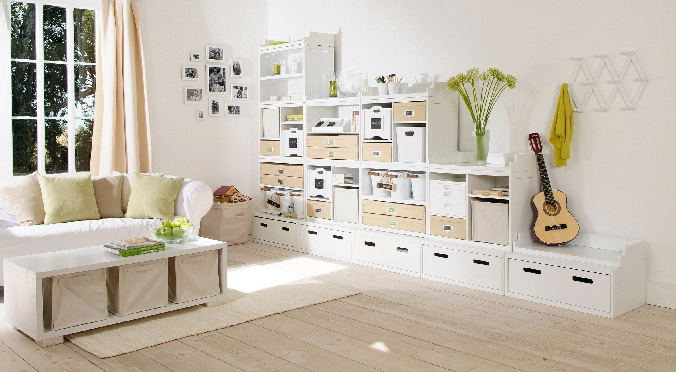 Fashionable Living Room Storage Units For Living Room Storage Furniture (View 1 of 15)