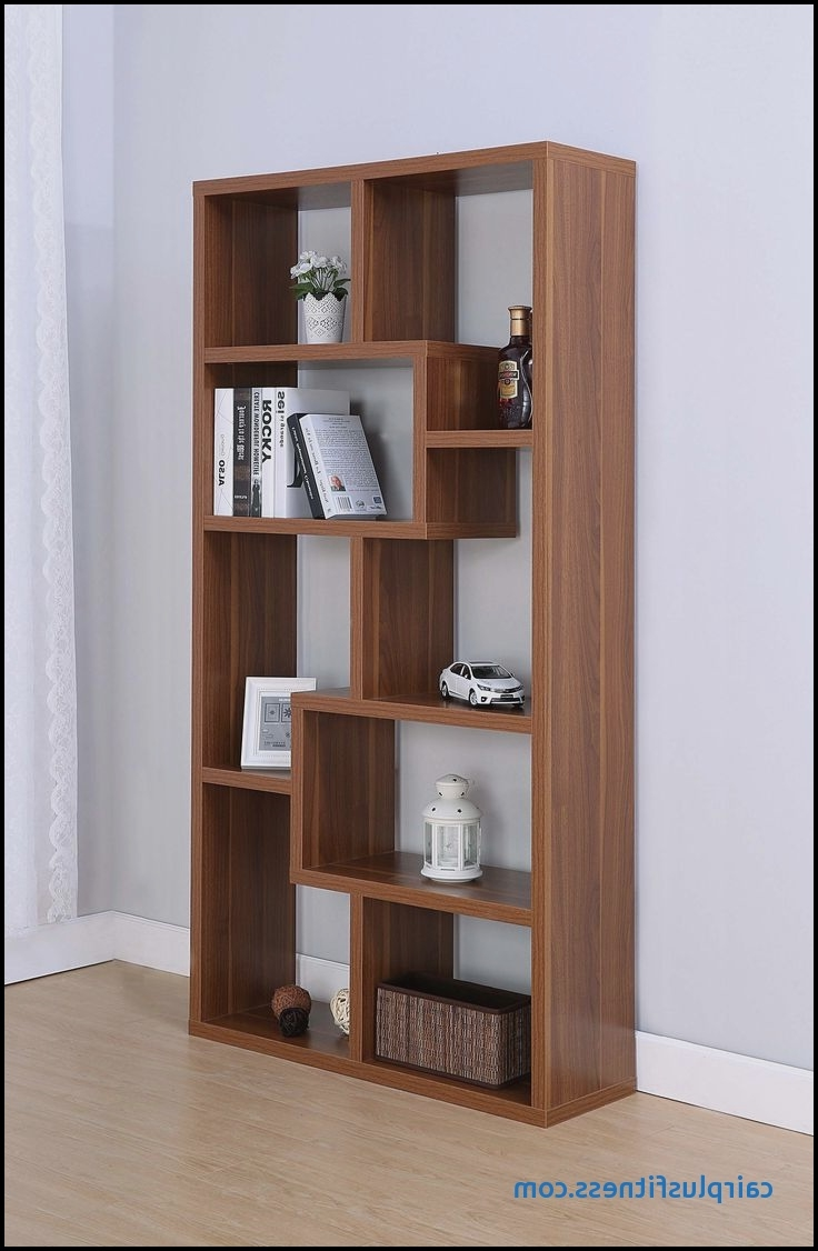 Fashionable Saunders Bookcases With Saunders Bookcase Beautiful 19 Best Bookcases And Display Cabinets (View 4 of 15)
