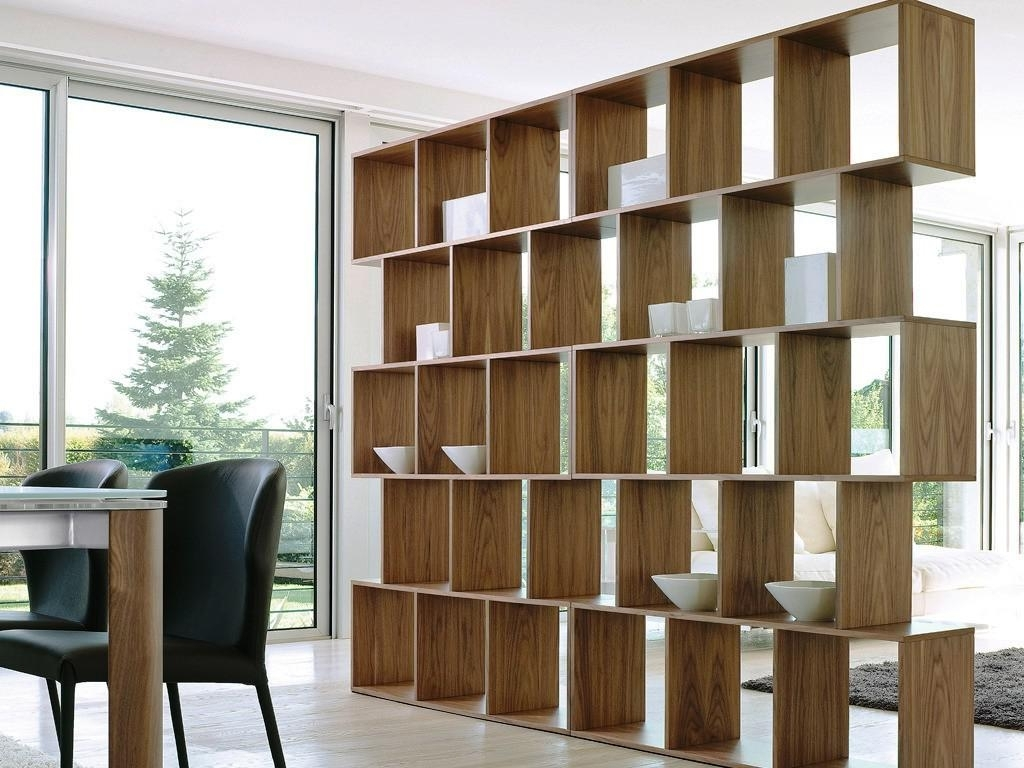 Favorite Contemporary Bookcases Room Divider Ideas — Contemporary In Contemporary Bookcases (View 5 of 15)