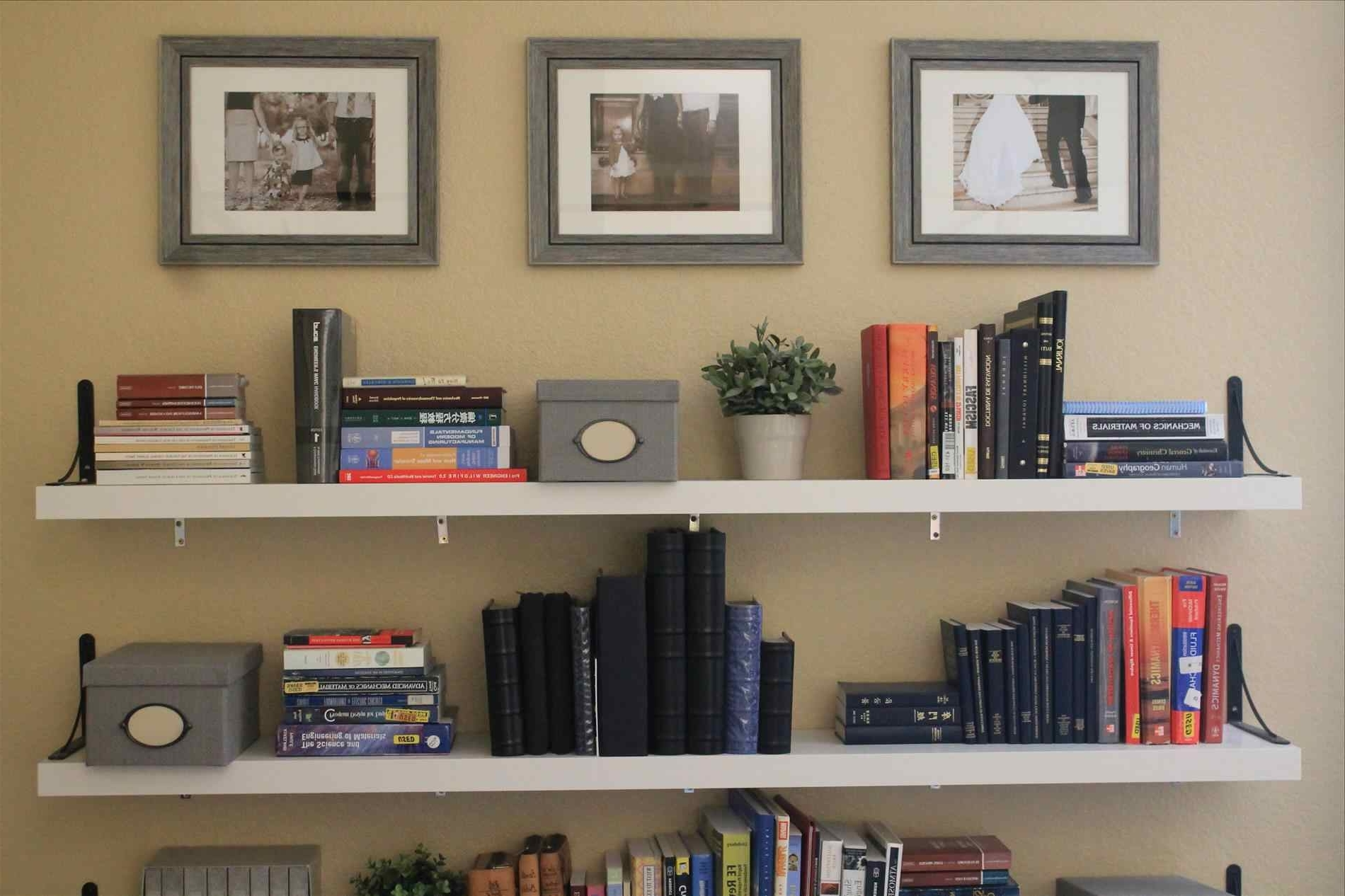 Floating Bookcases For Popular Shelves : Lovely Walmart Shelves Wall Floating Bookshelves How To (View 4 of 15)