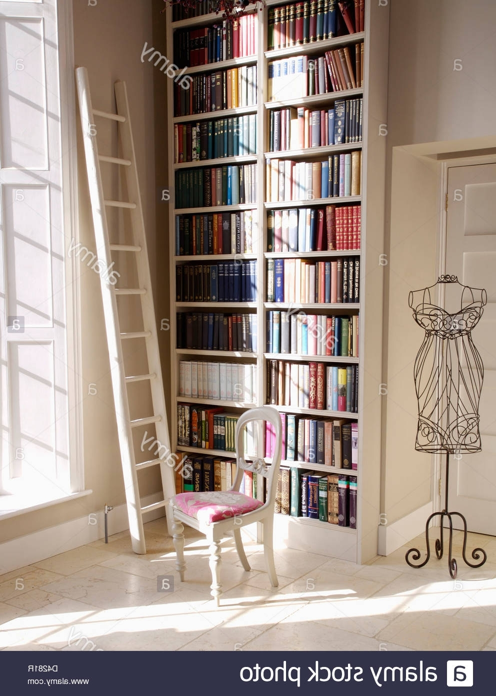 Floor To Ceiling Bookcases In 2018 White Ladder Beside Floor To Ceiling Bookshelves In Hall With (View 7 of 15)