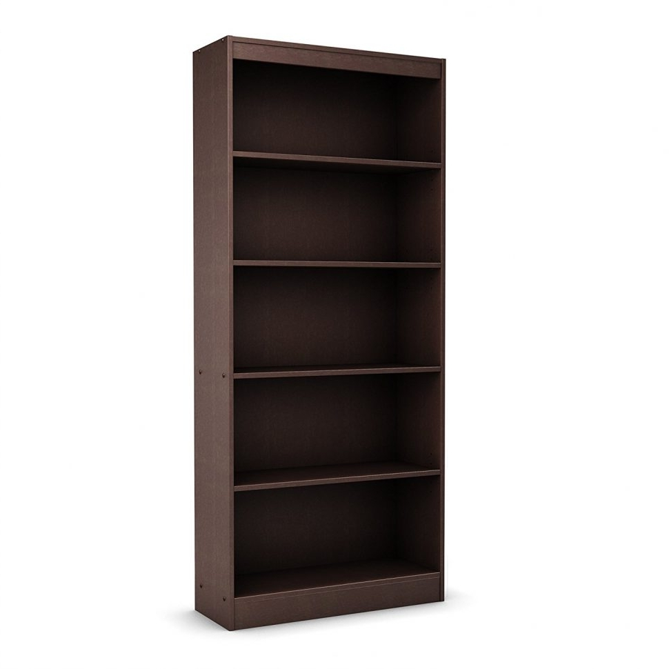 Furniture Home: Astonishing Big Lots Bookcases On Ikea Shelf Throughout Fashionable Big Lots Bookcases (View 9 of 15)