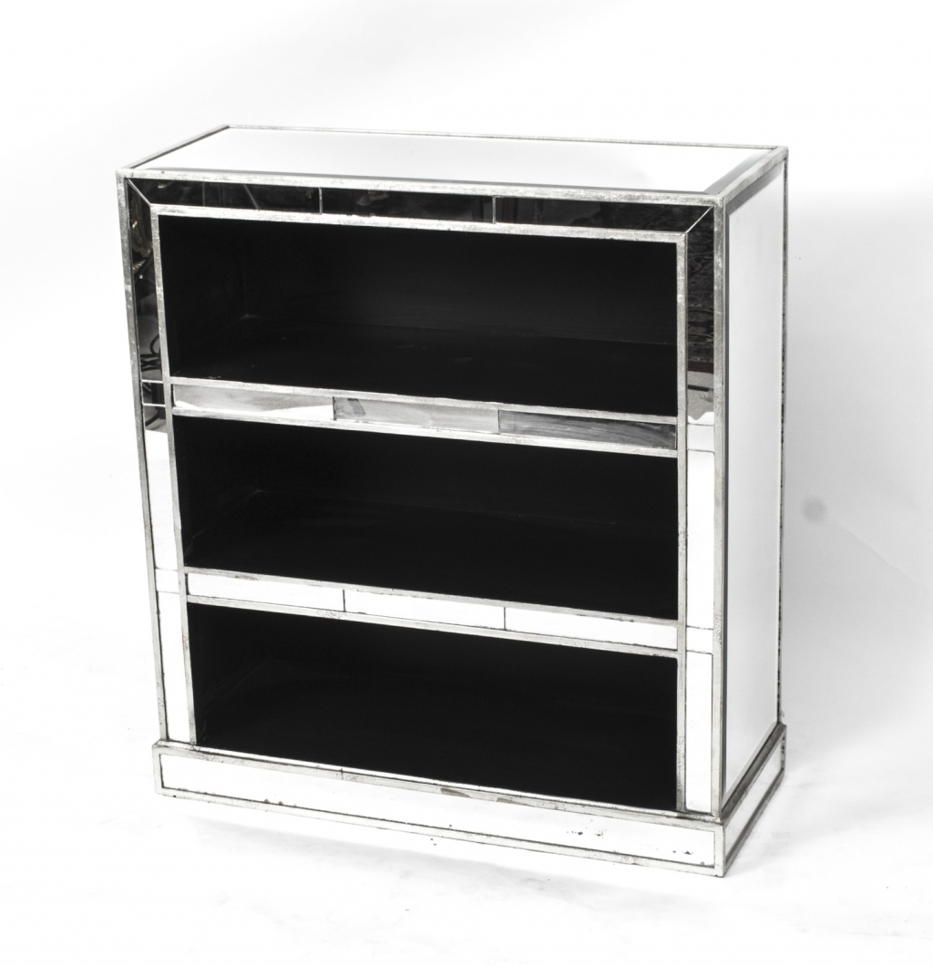 Furniture: Mirrored Bookcase Beautiful Swivel Bookcase Bookcases In Well Known Mirrored Bookcases (View 3 of 15)