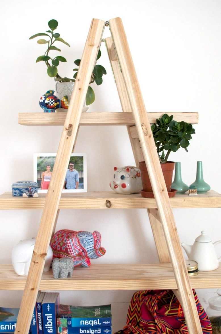 Ladder Shelves With Regard To Most Current Diy Ladder Shelves (View 6 of 15)