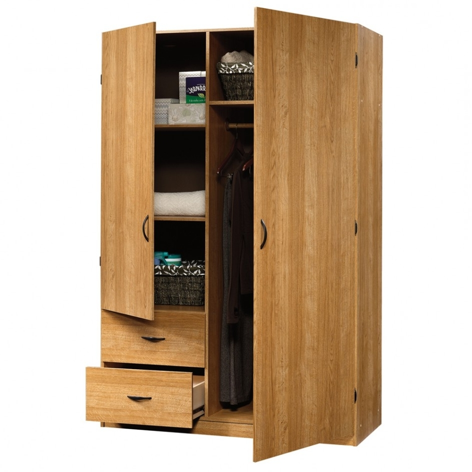 Large Storage Cupboards Within Well Known Bathrooms Design : Accent Storage Cabinet Two Door Cabinet Two (View 6 of 15)