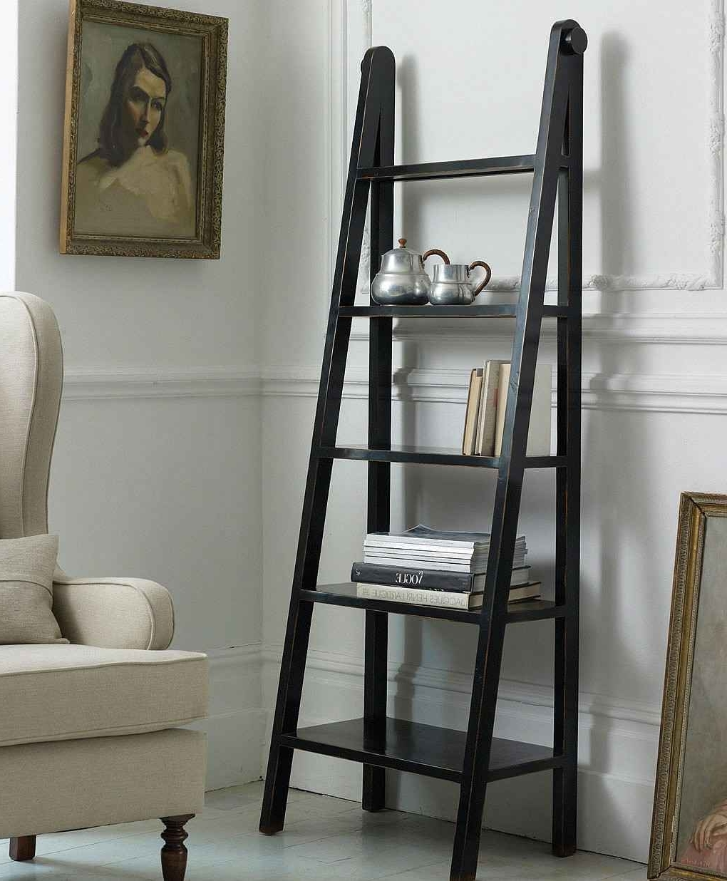Making Ladder Bookshelves » Home Decorations Insight With Newest Ladder Bookcases (View 11 of 15)