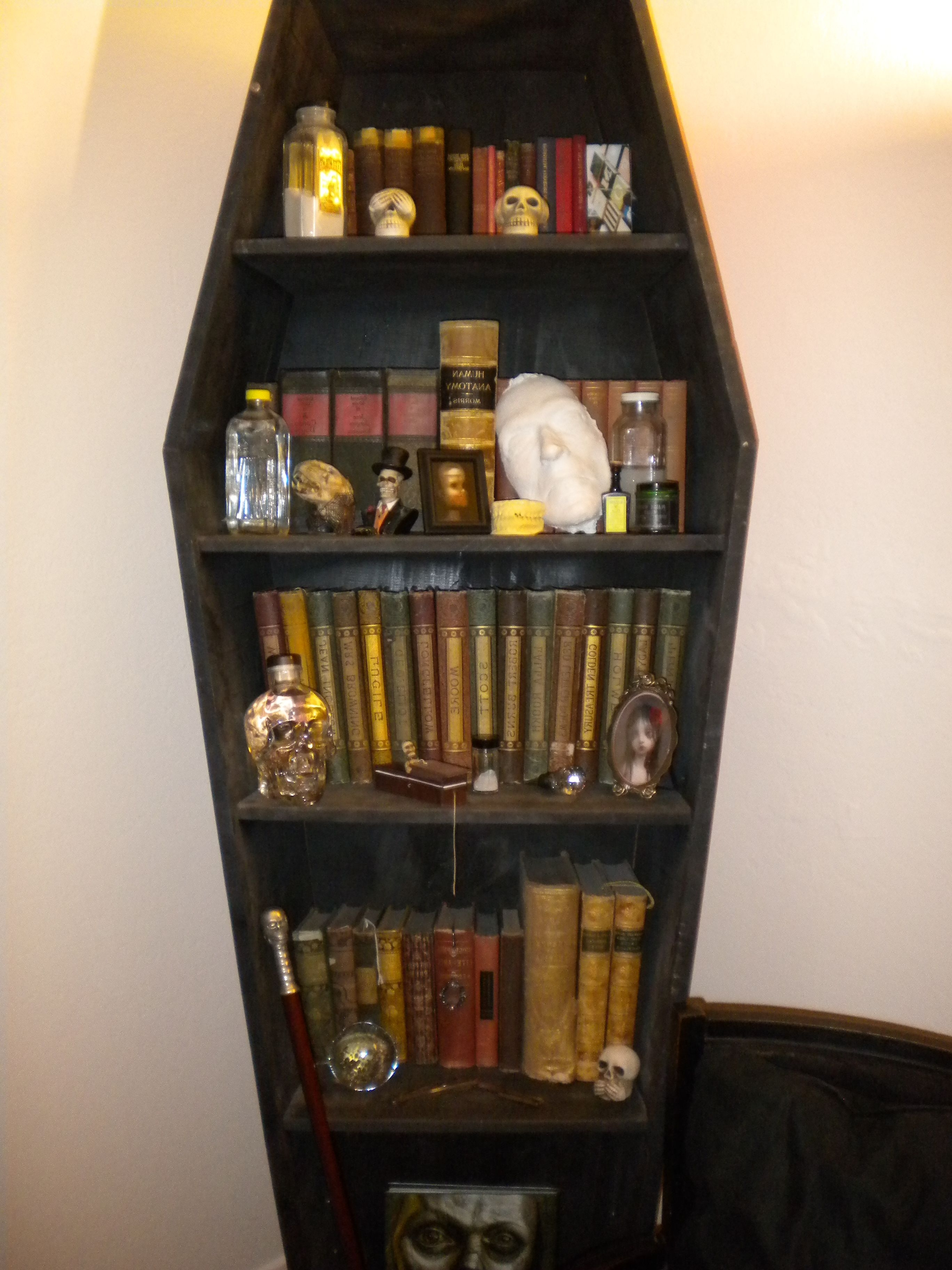 Most Current Coffin Bookcase (View 13 of 15)
