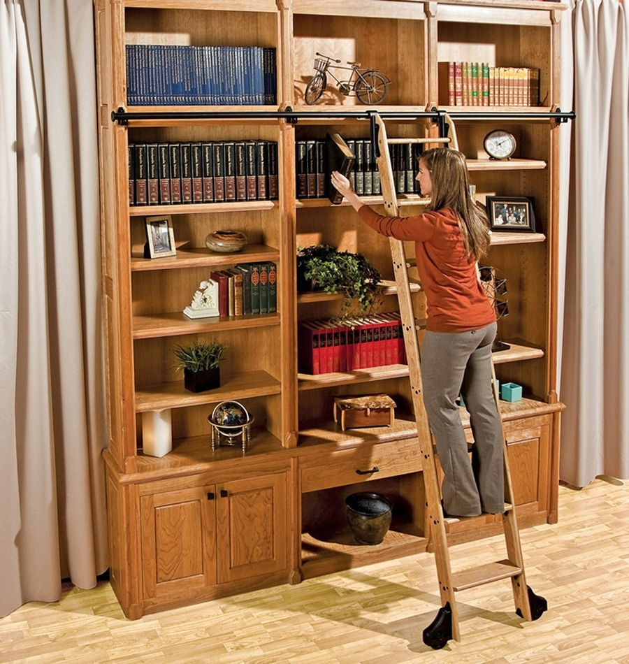 Most Current Furniture Home: Singular Bookcase Ladder And Rail Picture Design Within Bookcases With Ladder And Rail (View 6 of 15)