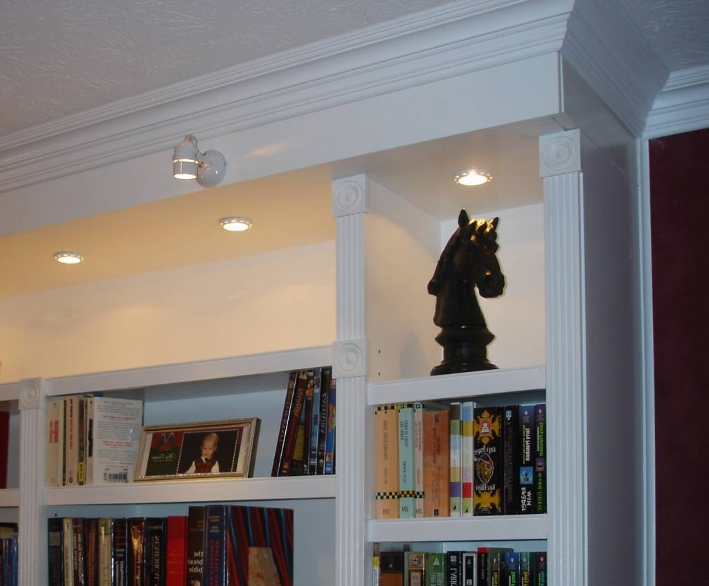 Most Popular Office Library Intended For Library Bookcases Lighting (View 10 of 15)