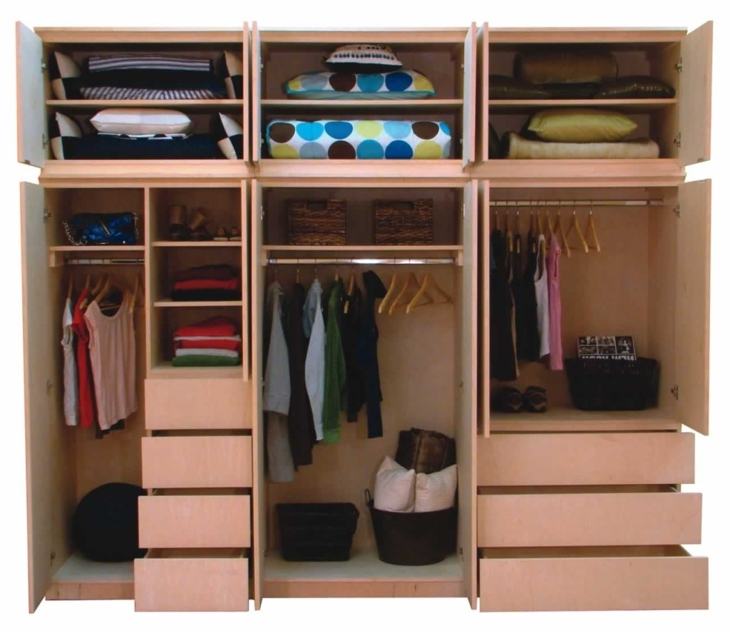 Most Recent Drawers And Shelves For Wardrobes With Regard To Functional Bedroom Closet And Cupboard Examples That Will Make (View 8 of 15)