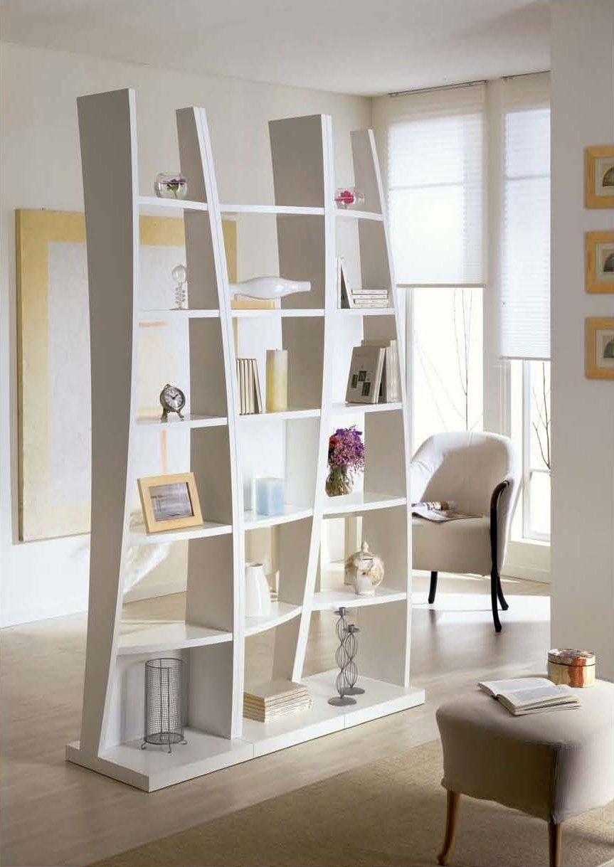 Most Recent Furniture: Astounding Picture Of White Living Room Decoration With Freestanding Bookcases Wall (View 9 of 15)