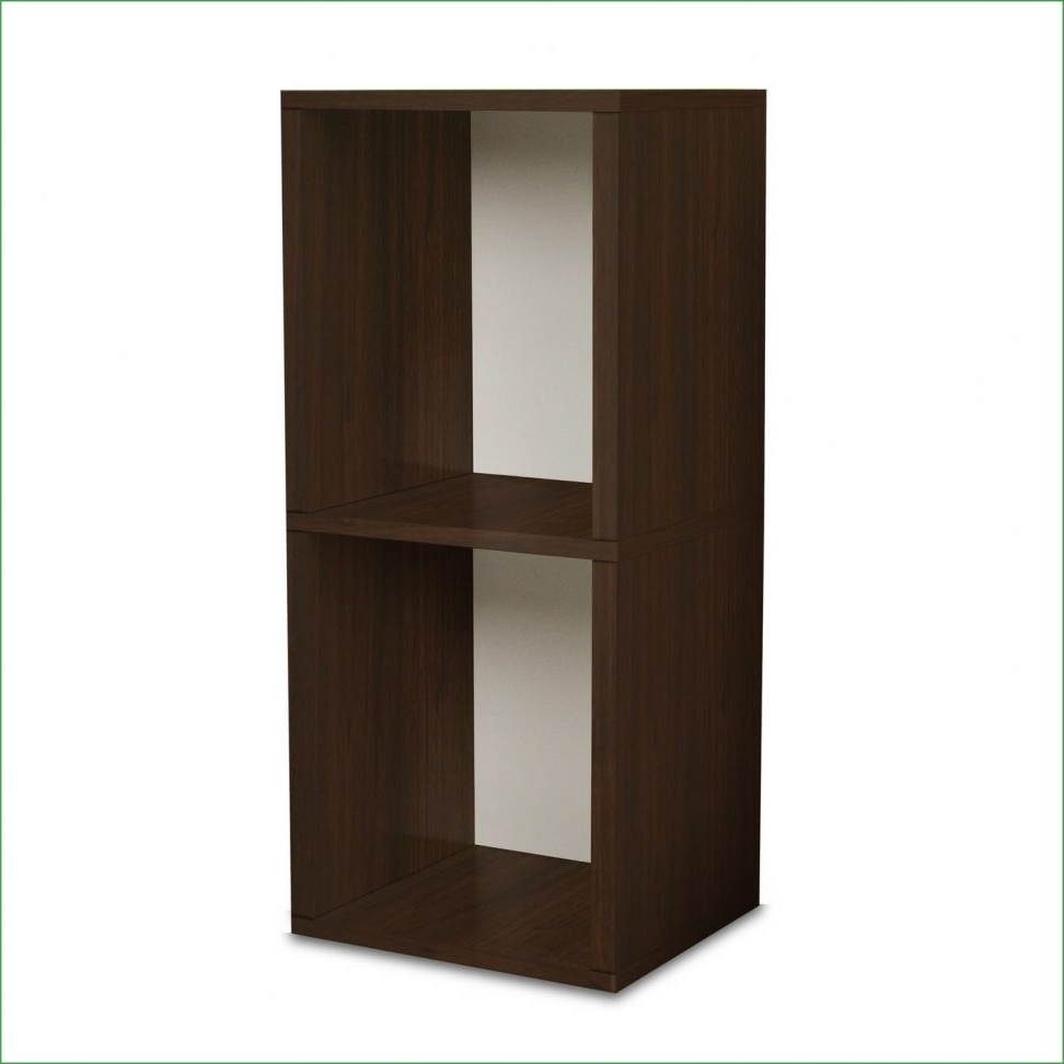 Most Recent Narrow Bookcase Without Door Bookcases With Doors Forl Spaces Inside Short Narrow Bookcases (View 9 of 15)