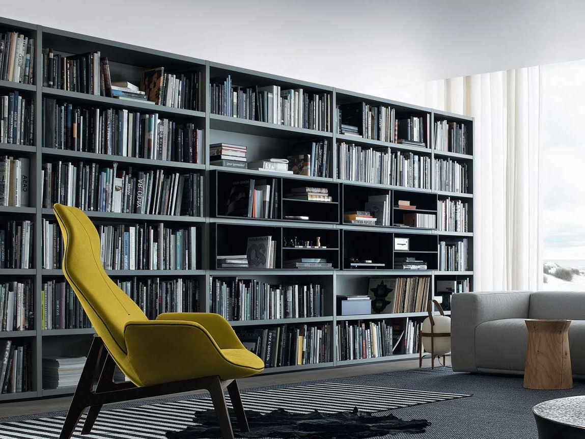 Most Up To Date Huge Bookshelves For Impressive Bookcase Partition To Manage Your Interior Space (View 11 of 15)