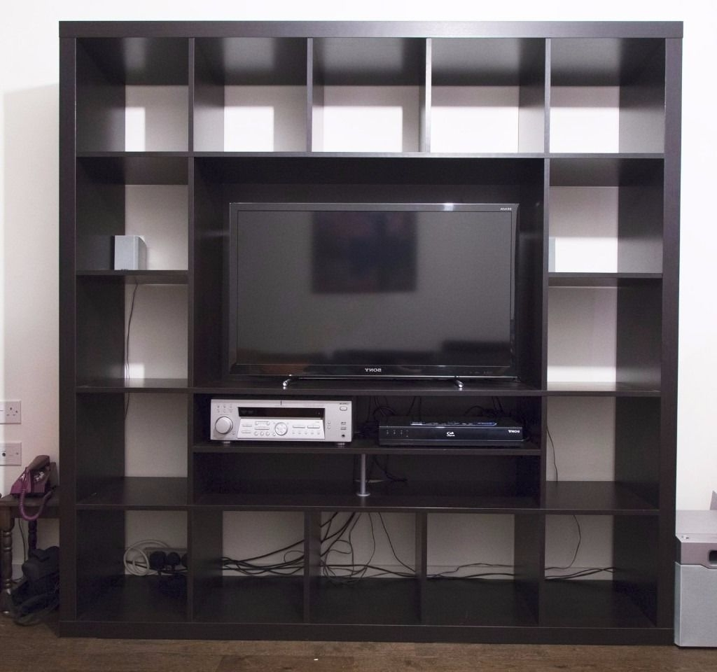 Newest Ikea Expedit Tv Storage Unit (View 11 of 15)