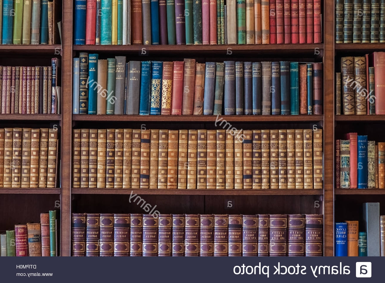 Old Antique Books On Bookshelves Stock Photo, Royalty Free Image Throughout Most Current Bookshelves (View 11 of 15)