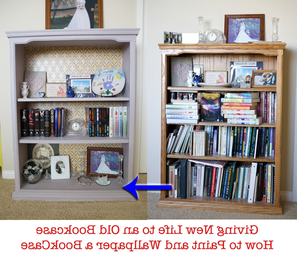 Popular Emmy Mom–One Day At A Time: Painting A Book Case With Annie Sloan Inside Painted Oak Bookcases (View 13 of 15)