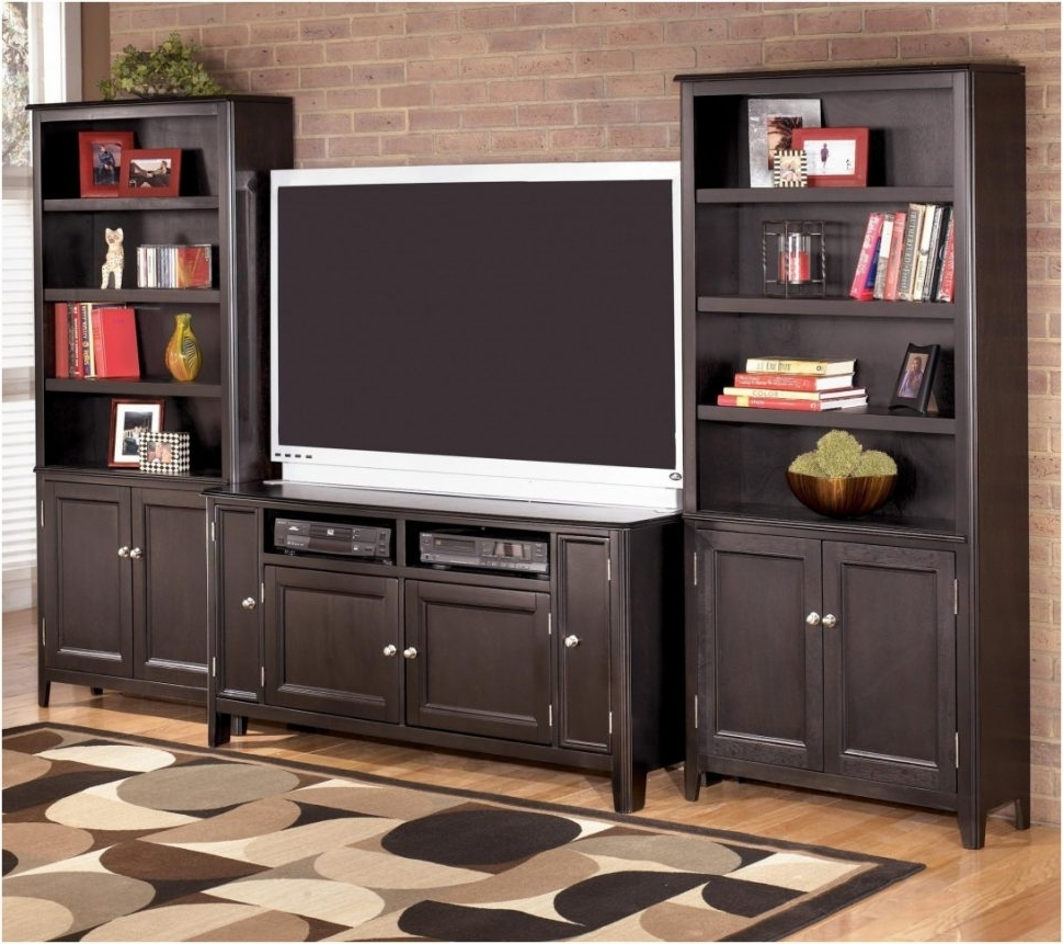 Preferred Bedroom : Amazing Tv Stand Bookcase Combo Mind Blowing Bookcases Regarding Tv Stand Bookcases Combo (View 11 of 15)