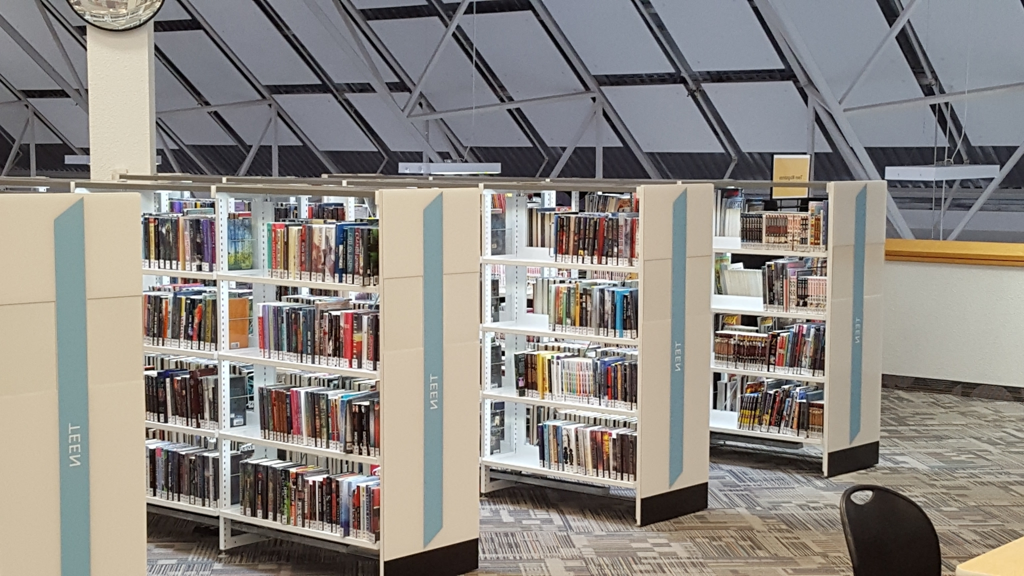 Preferred Public Library Dvd Shelving • Shelves Throughout Library Shelfs (View 13 of 15)