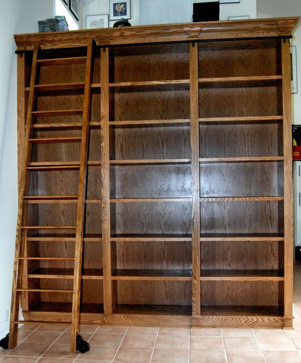 Recent Plus As Well Also With 39+ Exceptional Bookcases Ladder Photos Pertaining To Bookcases With Ladder (View 13 of 15)
