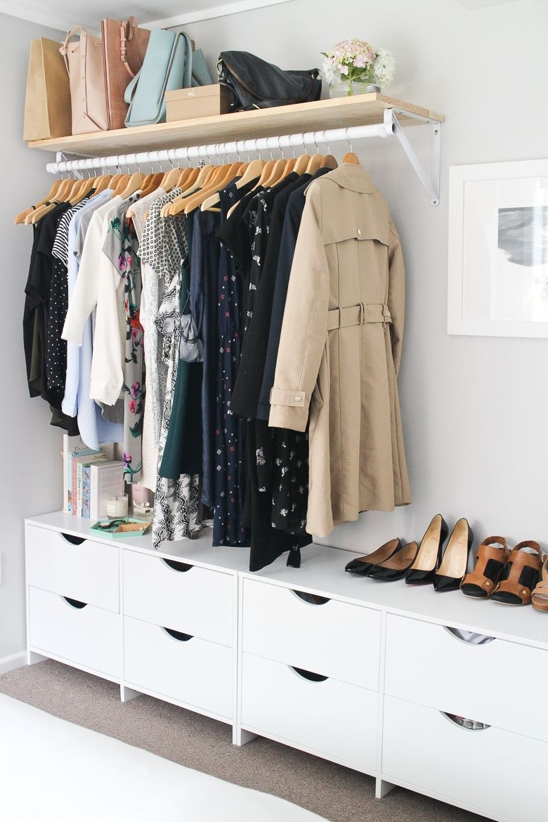 Featured Photo of Wardrobes Hangers Storages