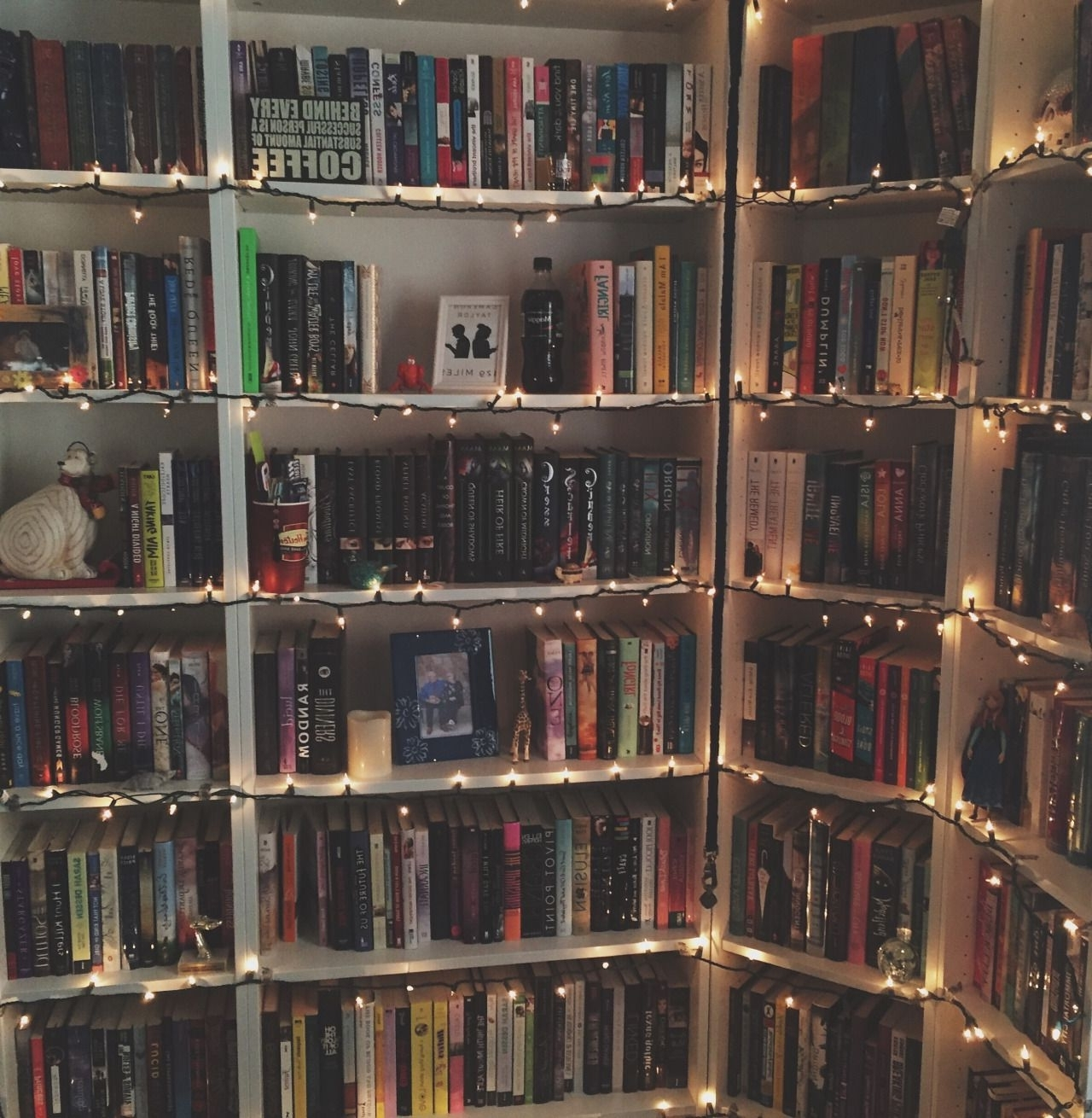 Think Positive — Hardcoverlust: I Put Christmas Lights On My Intended For Best And Newest Library Bookcases Lighting (View 14 of 15)
