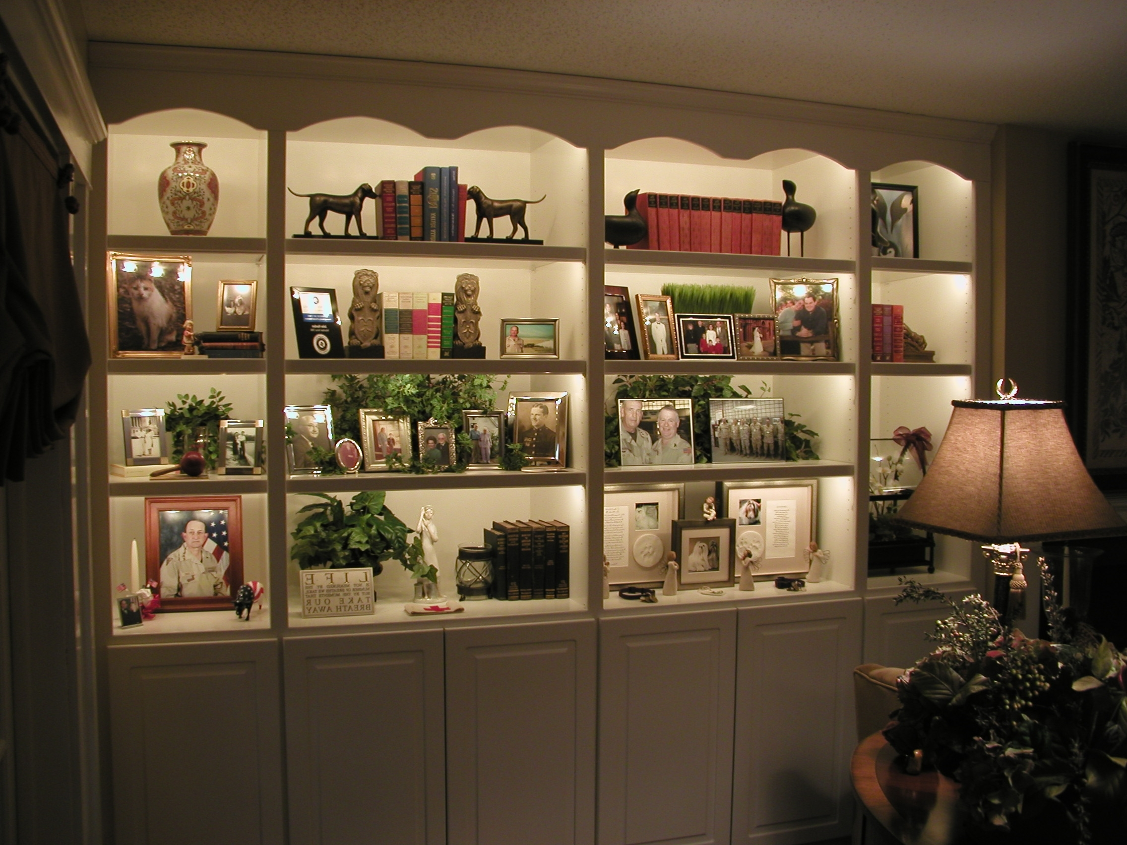 Trendy 55 Book Shelf Lighting, Bookshelf Lighting Houzz Inside Bookcases Lighting (View 12 of 15)