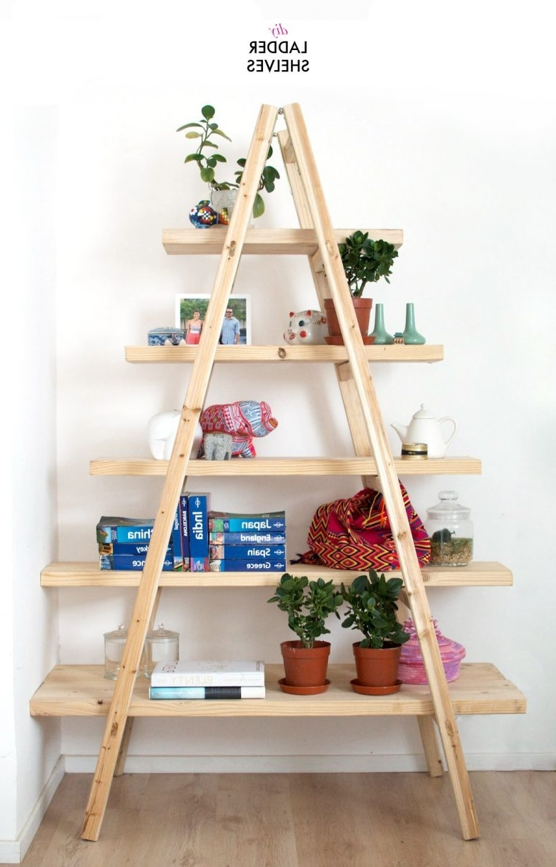 Trendy Diy Ladder Shelves (View 13 of 15)