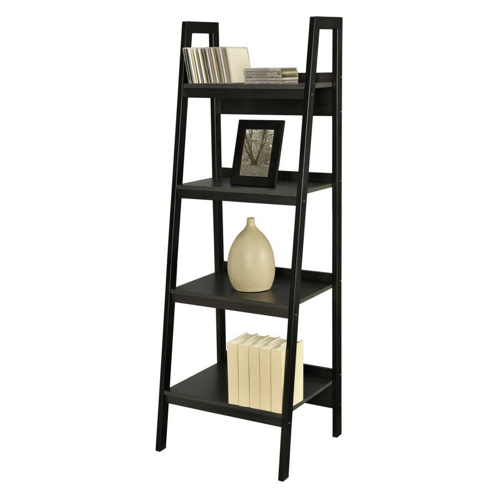 Well Known Ladder Ikea Bookcases Pertaining To Furniture: Bookcase Ladder And Leaning Ladder Shelves (View 13 of 15)