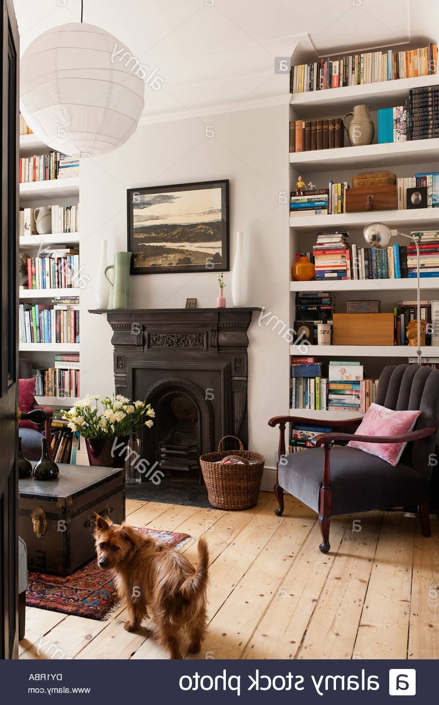 White Painted Bookshelves In Sitting Room With Traditional In Newest Traditional Bookshelves (View 14 of 15)