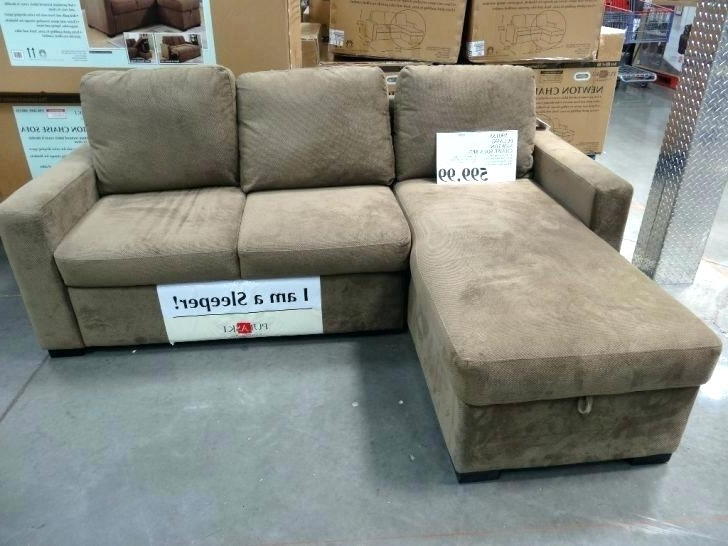 Best Sectional Sofa – Dynamicpeople (View 1 of 10)