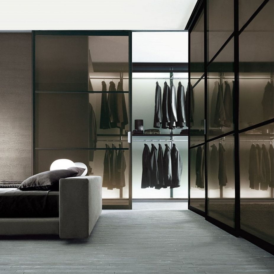 Black Glass Wardrobes Within Well Known Closet: Fabulous Grey Color Scheme Walk In Wardrobe Designs In (View 6 of 15)