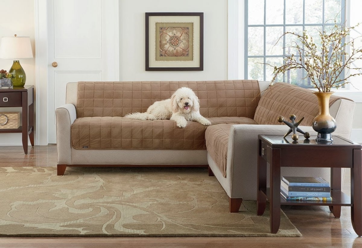 Furniture: Furniture Slipcovers (View 13 of 15)