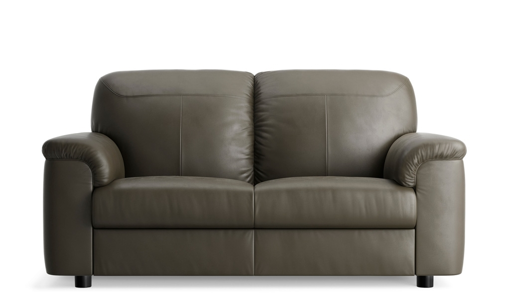 Impressive Full Grain Leather Sectional Sofa Sanblasferry For In Well Known 2 Seat Sectional Sofas (View 7 of 15)