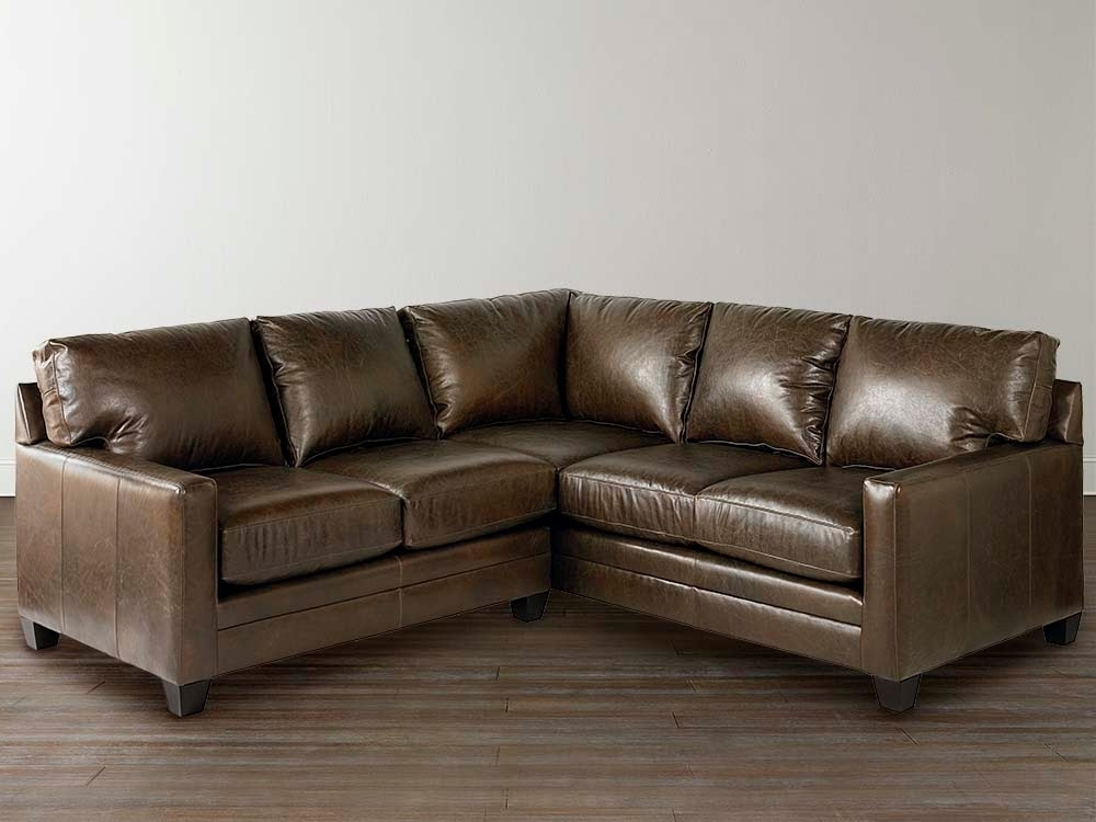 Most Recently Released Leather L Shaped Sectional Sofas With Sofa Beds Design: Interesting Contemporary Small L Shaped (View 7 of 10)