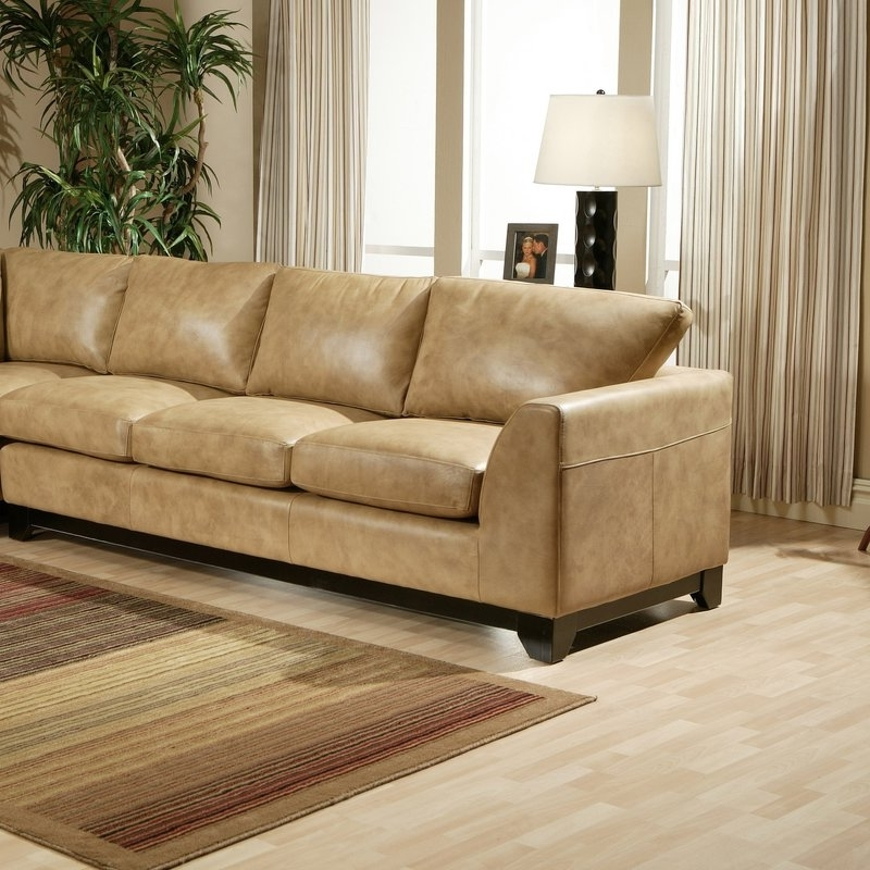 View Gallery of Sleek Sectional Sofas Showing 7 of 10 Photos