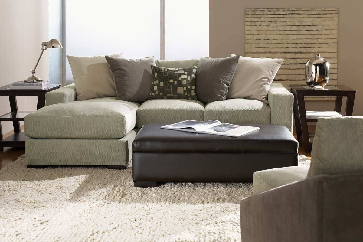 Well Liked Small Chaises With Regard To Small Sectional Sofa With Chaise: Perfect Choice For A Small Space (View 13 of 15)