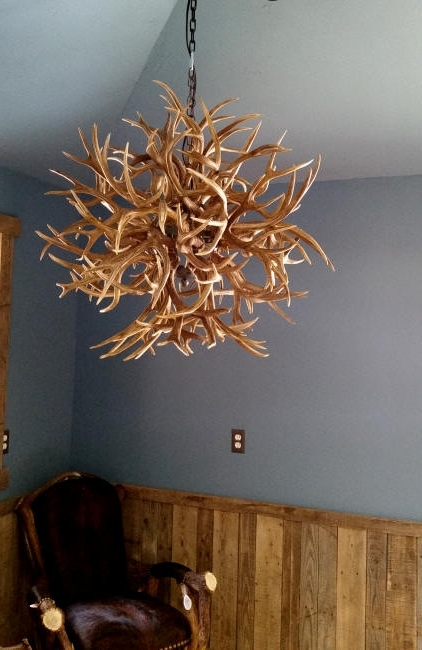 Antler Chandeliers And Lighting Inside Most Recent Custom Deer Antler Chandeliers And Lighting (View 1 of 10)