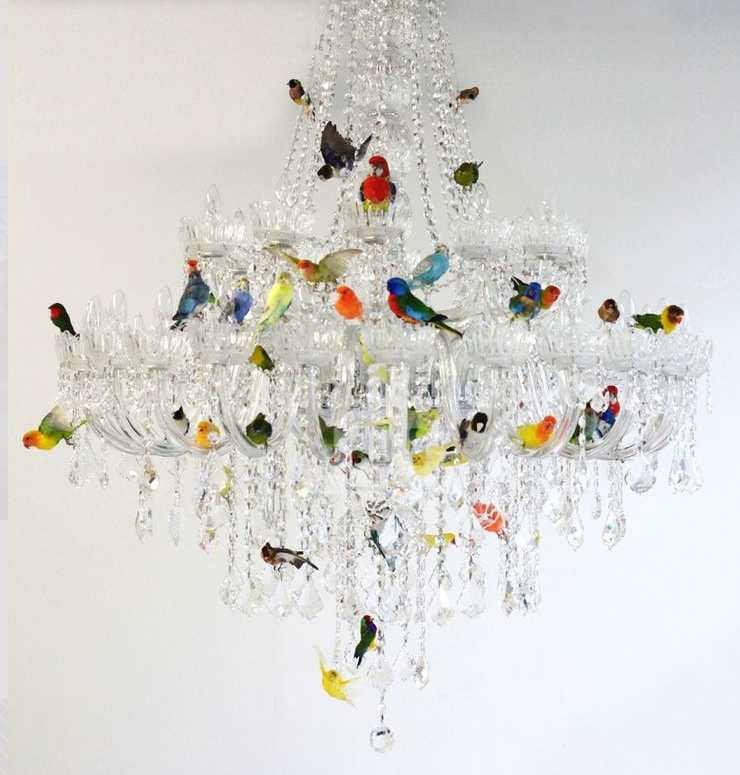 Photos of funky chandeliers showing 6 of 10 photos funky chandeliers intended for preferred funky chandeliers chandelier astonishing funky chandeliers funky gallery 6 of aloadofball Choice Image