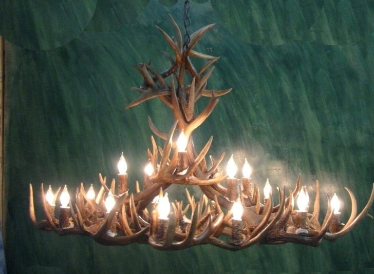 Newest Turquoise Antler Chandeliers Throughout Whitetail Antler Chandelier Real Mad River Mule Deer Side View  (View 5 of 10)