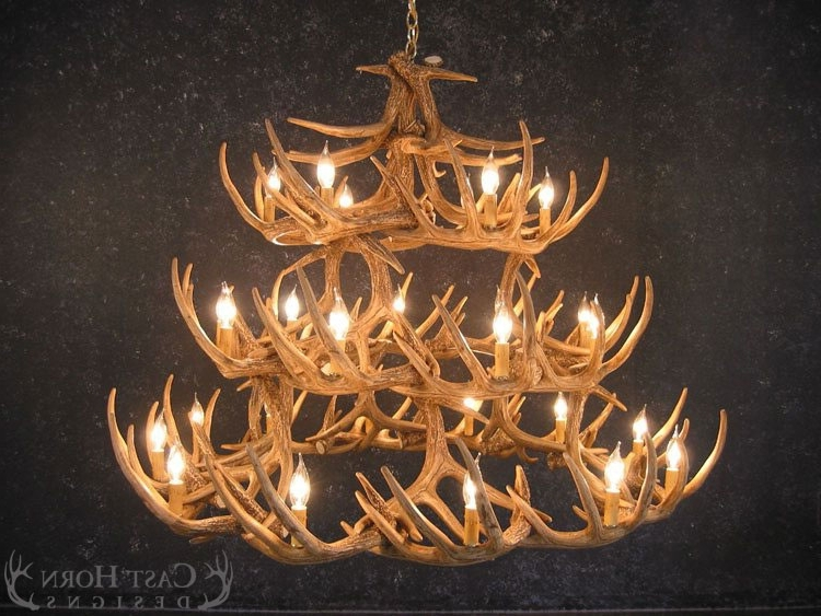 Trendy Antler Chandeliers In Whitetail Deer 42 Antler Chandelier (View 5 of 10)